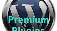 5 premium WordPress plugins