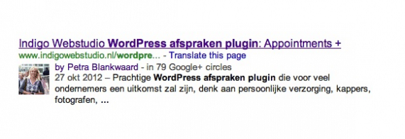 foto in google header