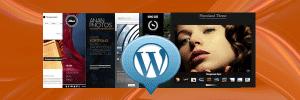 Onderhoud WordPress thema's