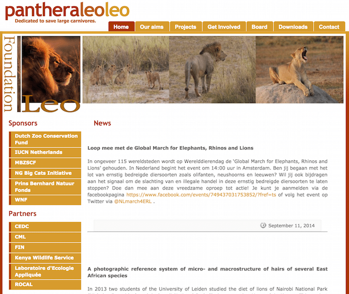Leo Foundation wordpress restyling
